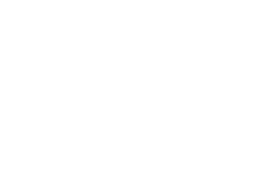 sweet willow wellness logo
